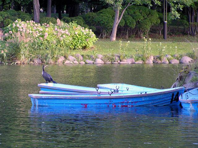 070908boat.jpg