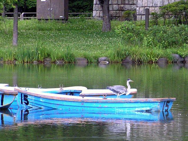 090716boat.jpg