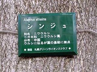 100921jumokumeiban.jpg