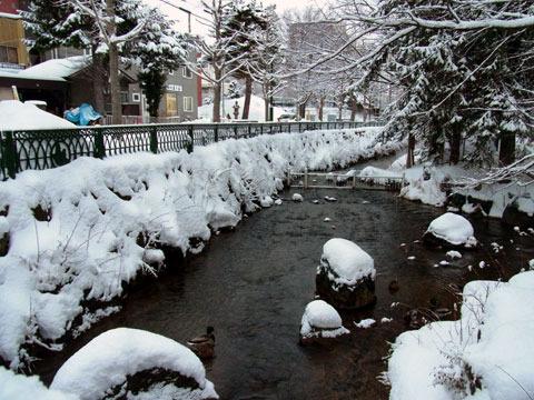 121211kamokamogawa.jpg