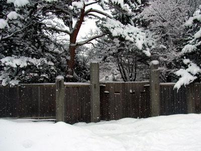 131230fukuyama.jpg