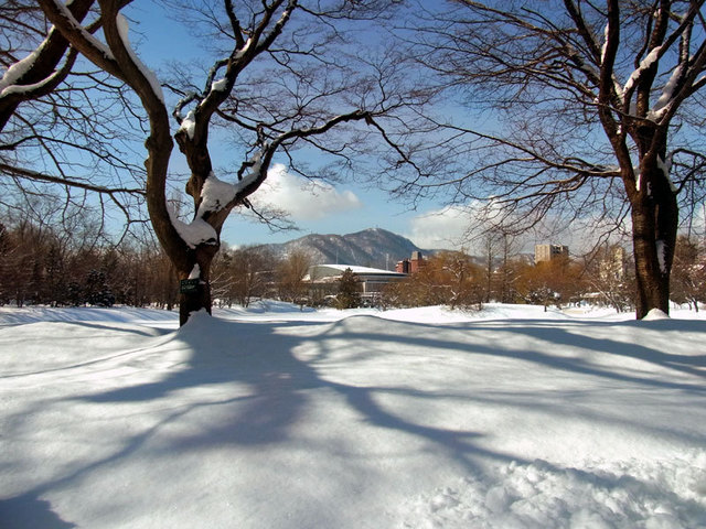 140312moiwayama.jpg