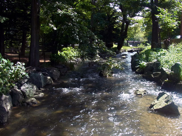 150908kamokamogawa.jpg