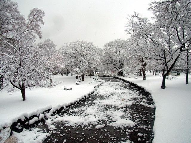 151124kamokamogawa.jpg