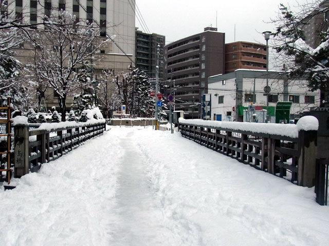151218nakajimabasi.jpg
