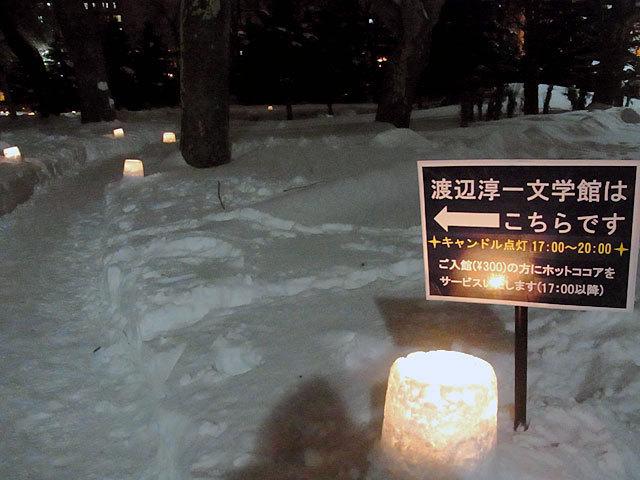 160205yukiakari1.jpg