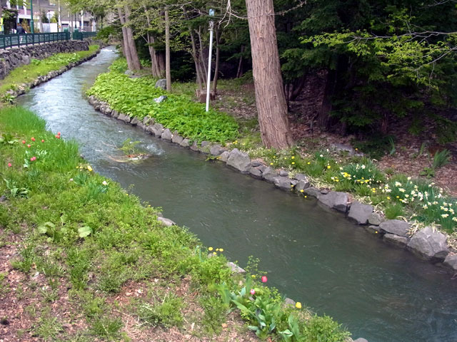 170513kamokamogawa.jpg