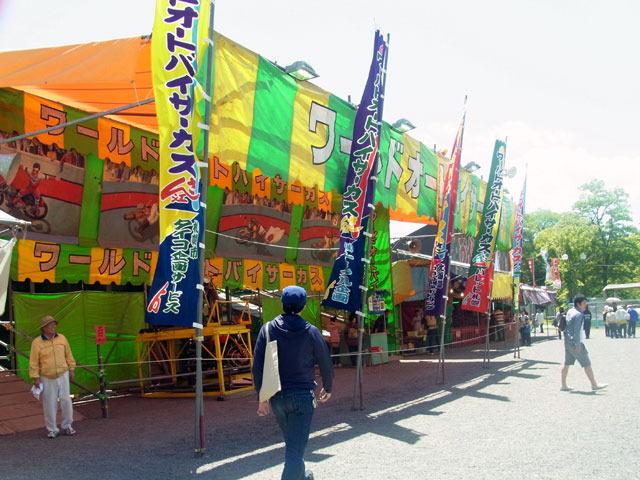 170614sakasu.jpg