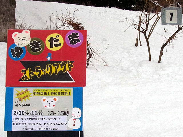 180210yukiakari2.jpg