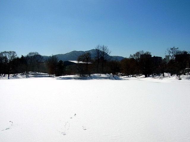 180310moiwayama.jpg