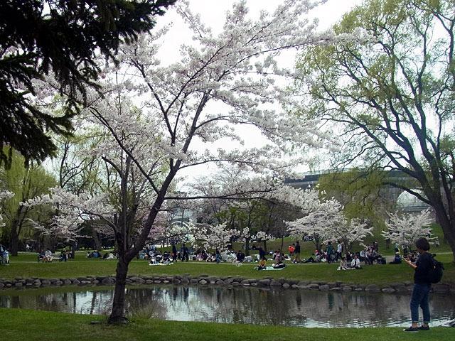 180430houheikanngawa.jpg