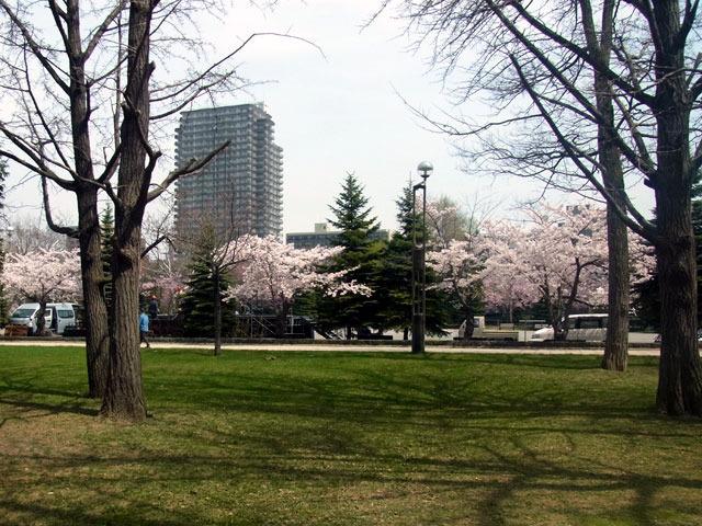 180501jiyuhiroba.jpg