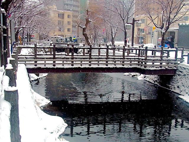 200129susukino6.jpg