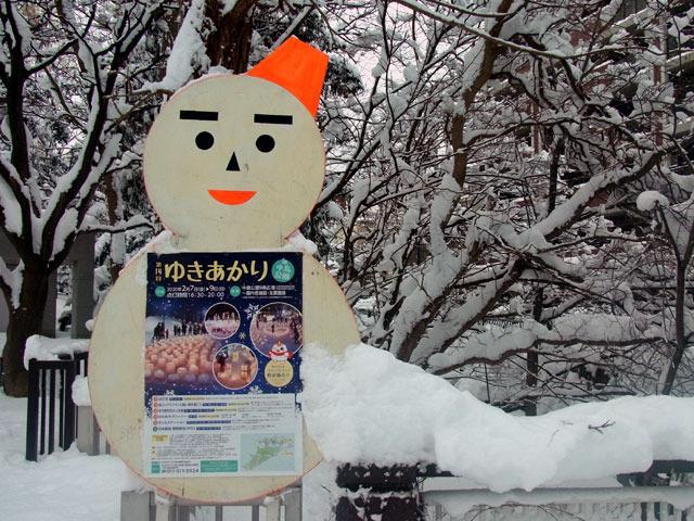 200206yukiakari.jpg