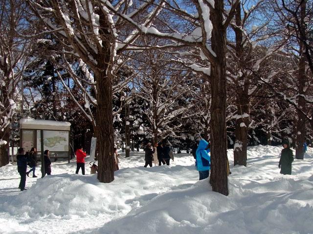 200211kujohiroba.jpg