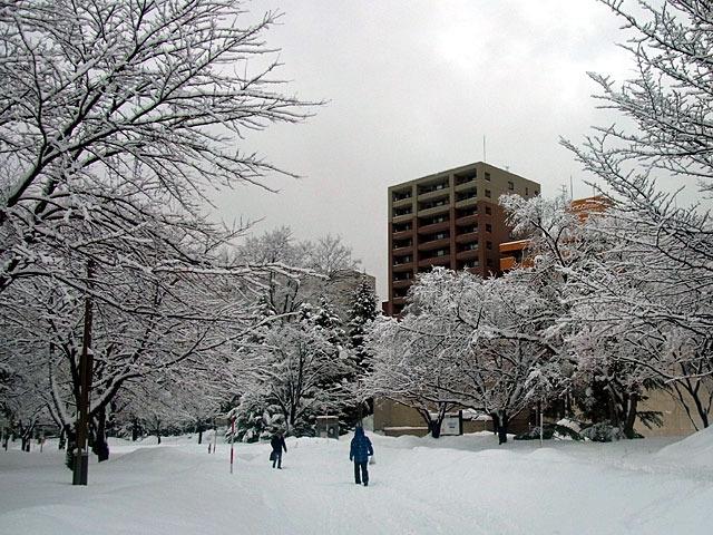 200218yuki8.jpg
