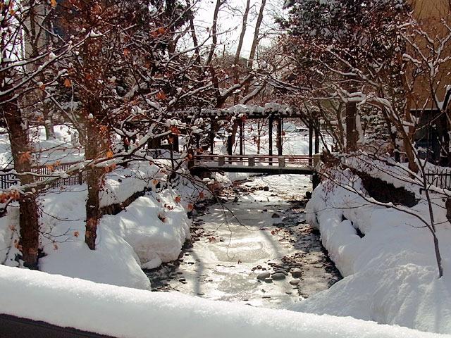 200229karekawa1.jpg