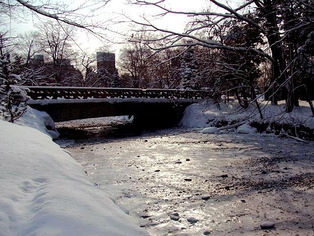 200229karekawa10.jpg