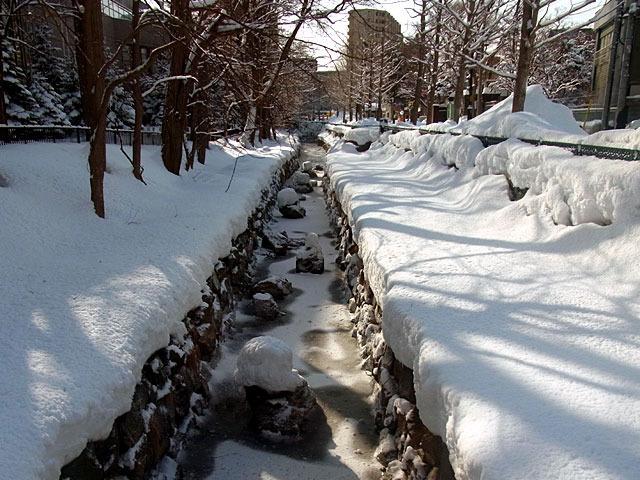 200229karekawa5.jpg