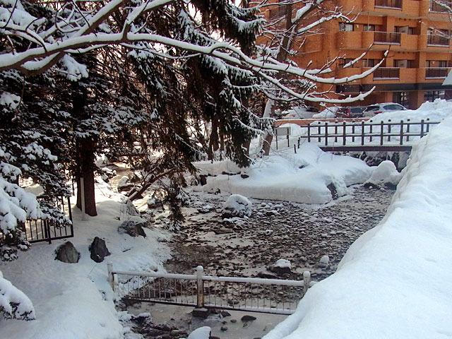 200229karekawa6.jpg