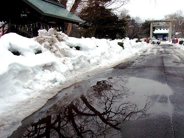 200310yukidoke4.jpg