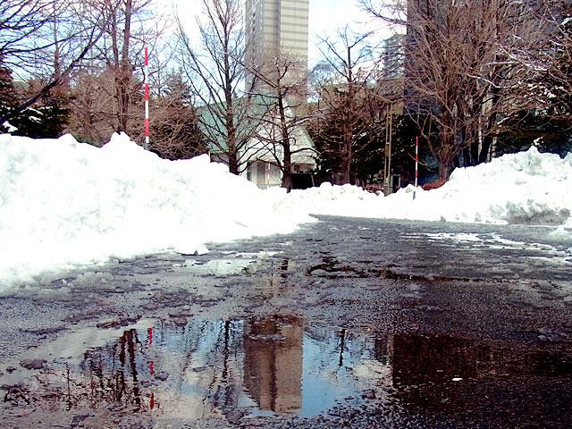 200312yukidoke4.jpg
