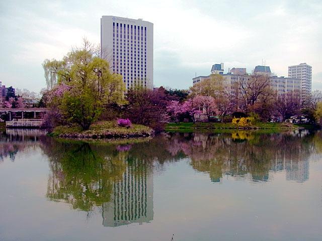 200504sakura5.jpg