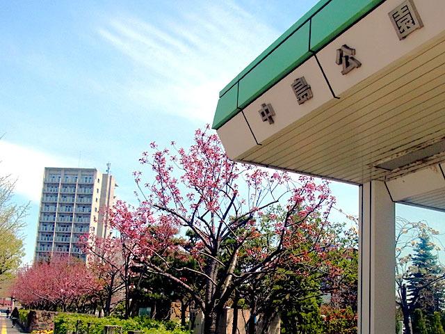 200508sakura1.jpg