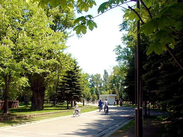 200530shoka6.jpg