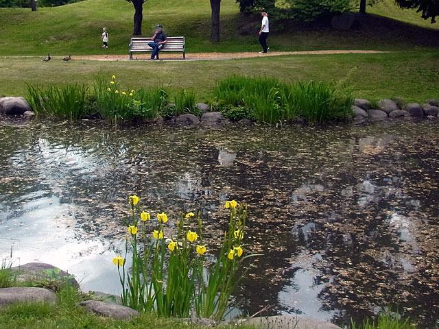 200602kishoubu2.jpg