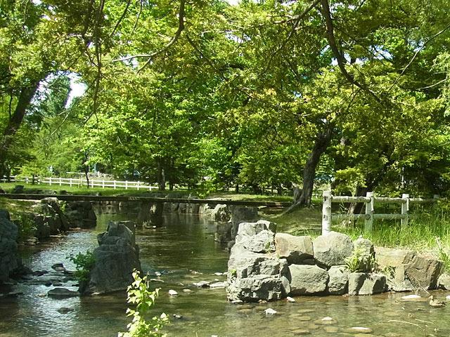 200606oyako9.jpg