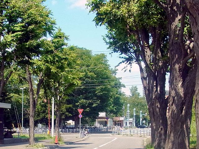 200614iki.jpg