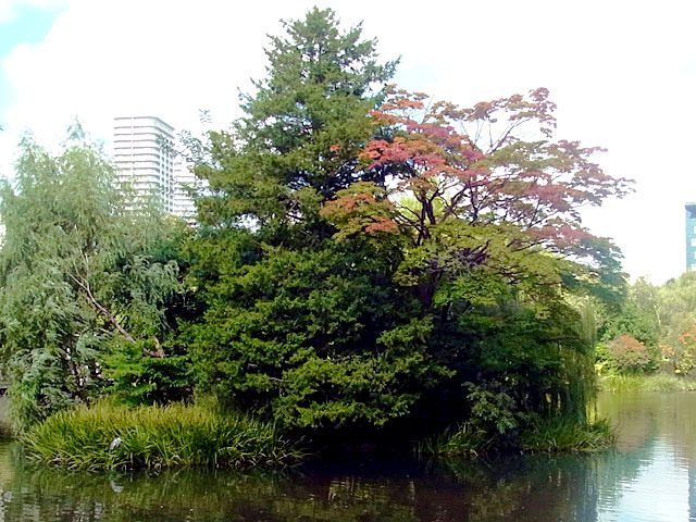 200915aosagi1.jpg