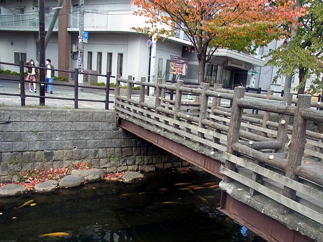 201022susukino.jpg