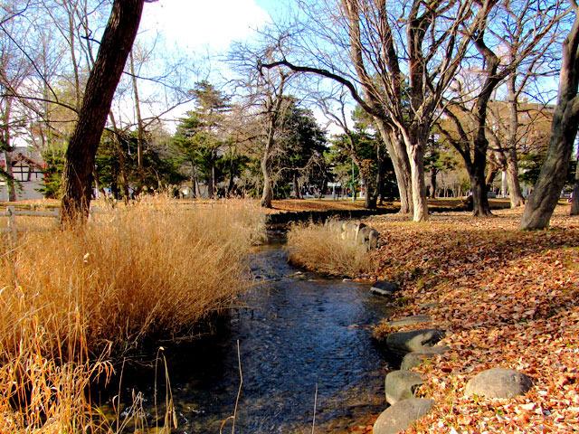 201213kamokamogawa.jpg