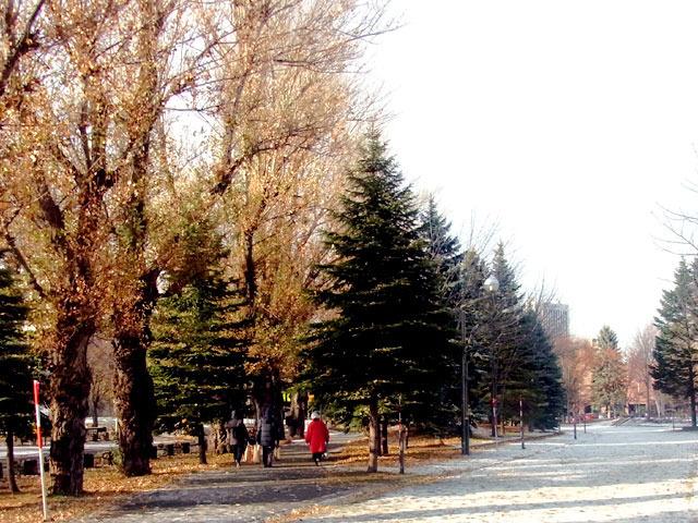 201215enro2.jpg