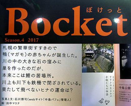 2017bocket4.jpg