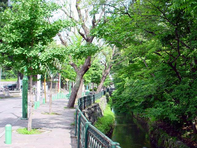 020814kamokamogawa.jpg