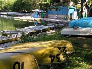 110901boats.jpg