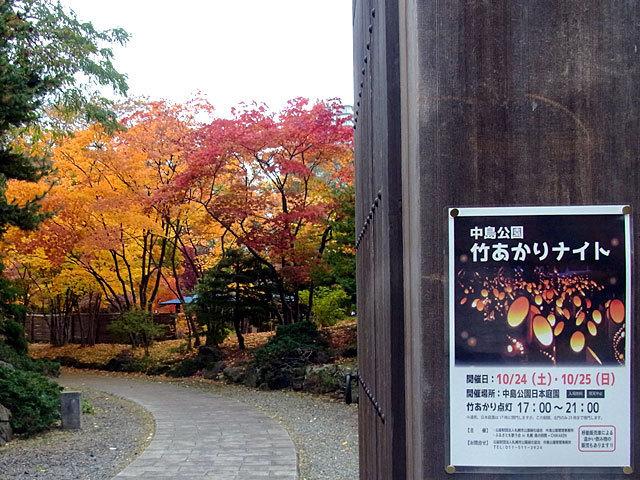 151024takeakari.jpg
