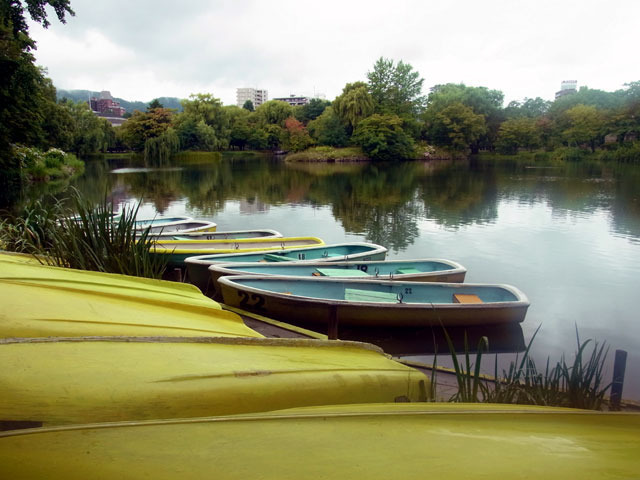 180814boats-thumbnail2.jpg