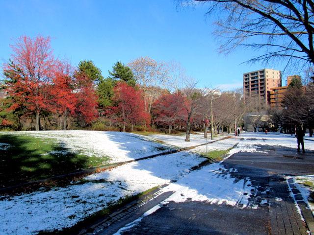 201201enro.jpg